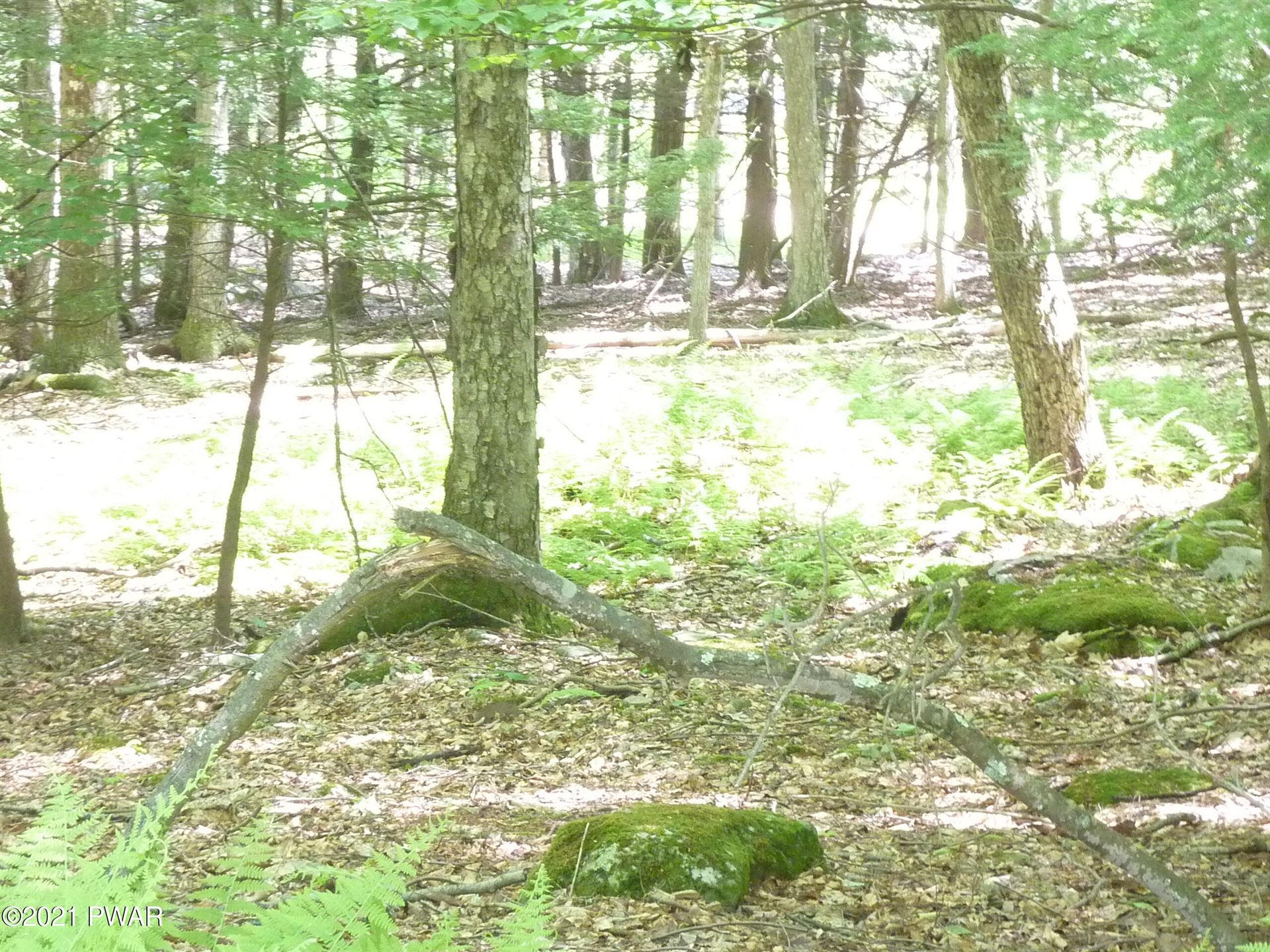 Photo of 93 Indian Dr, Greentown, PA 18426 (MLS # 21-2154)