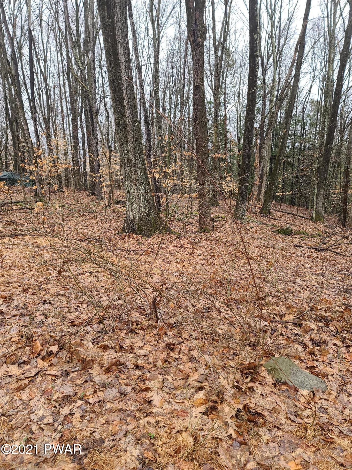 Photo of Lot 1 N Briar Hill Rd, Lakeville, PA 18438 (MLS # 21-1165)