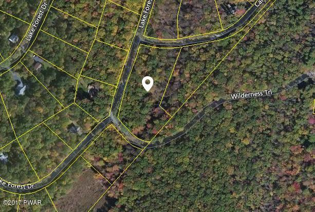 Photo of Lot 683 Lake Forest Dr, Dingmans Ferry, PA 18328 (MLS # 21-2208)