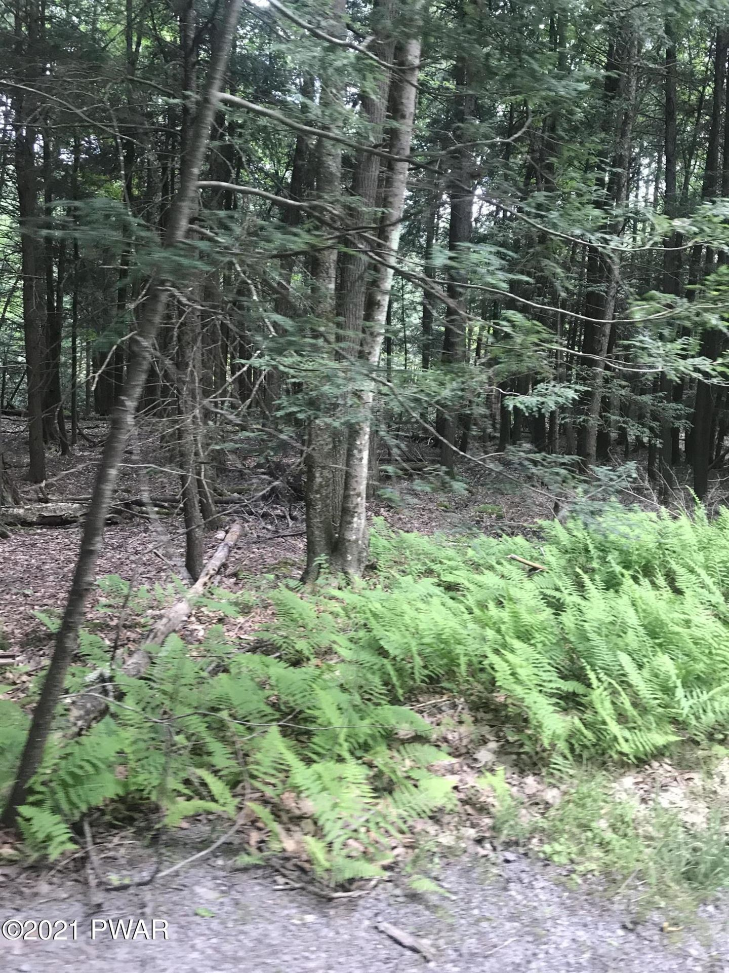 Photo of Lot 71 Watermill Road, Paupack, PA 18451 (MLS # 21-2289)