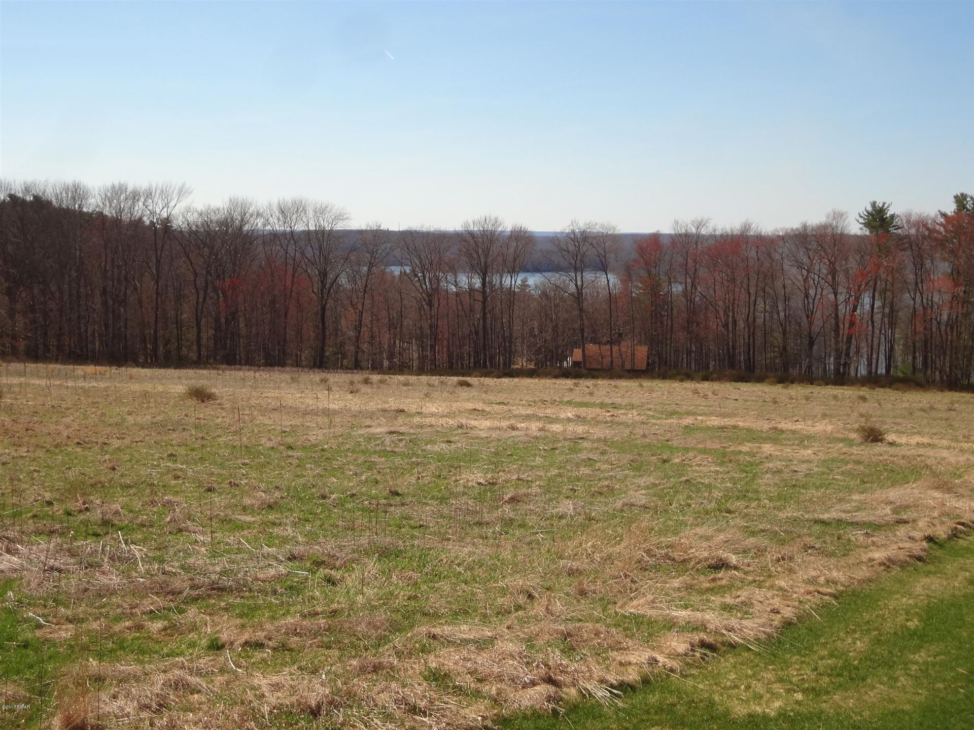 Photo of 21 Calico Point Drive, Paupack, PA 18451 (MLS # 17-1383)