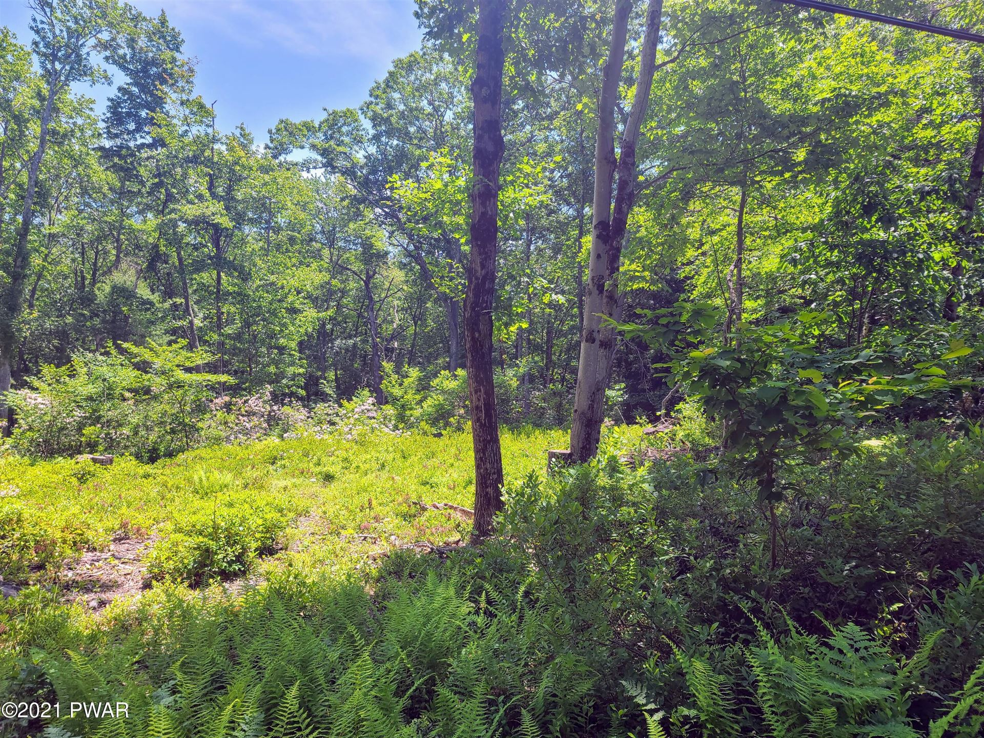 Photo of 116 Red Shale Rd, Hawley, PA 18428 (MLS # 20-4564)