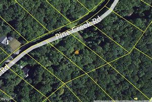 Photo of 810 Pine Creek Rd, Lakeville, PA 18438 (MLS # 13-585)