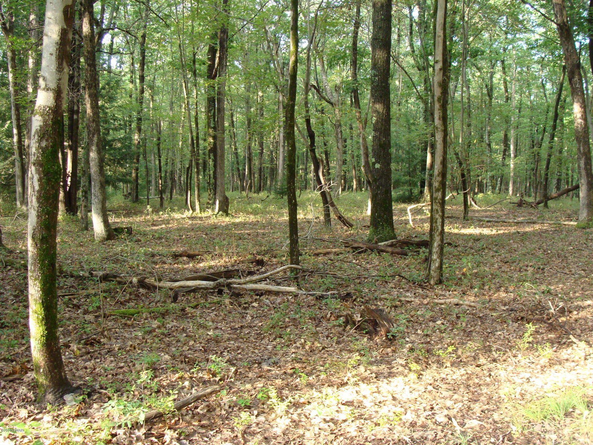 Photo of Perry Rd, Greentown, PA 18426 (MLS # 20-3596)