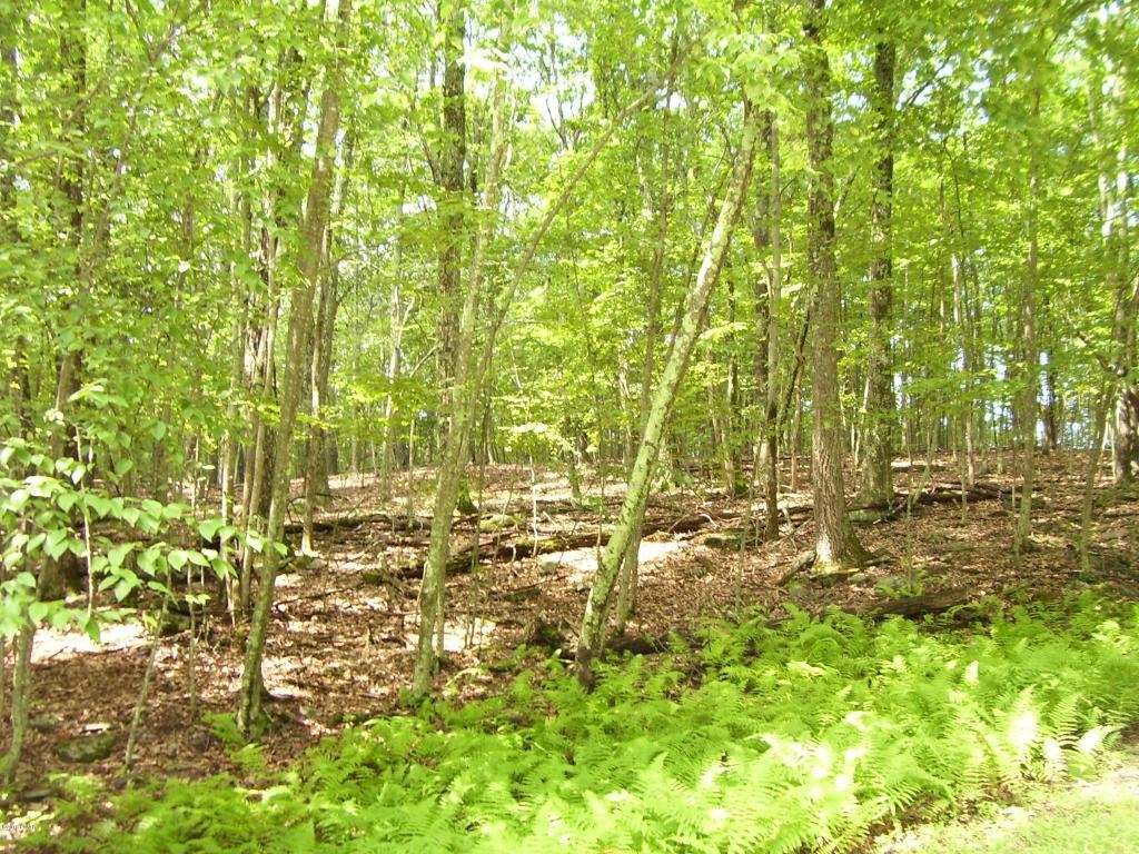 Photo of Lot 92 Stone Dr, Hawley, PA 18428 (MLS # 18-3616)