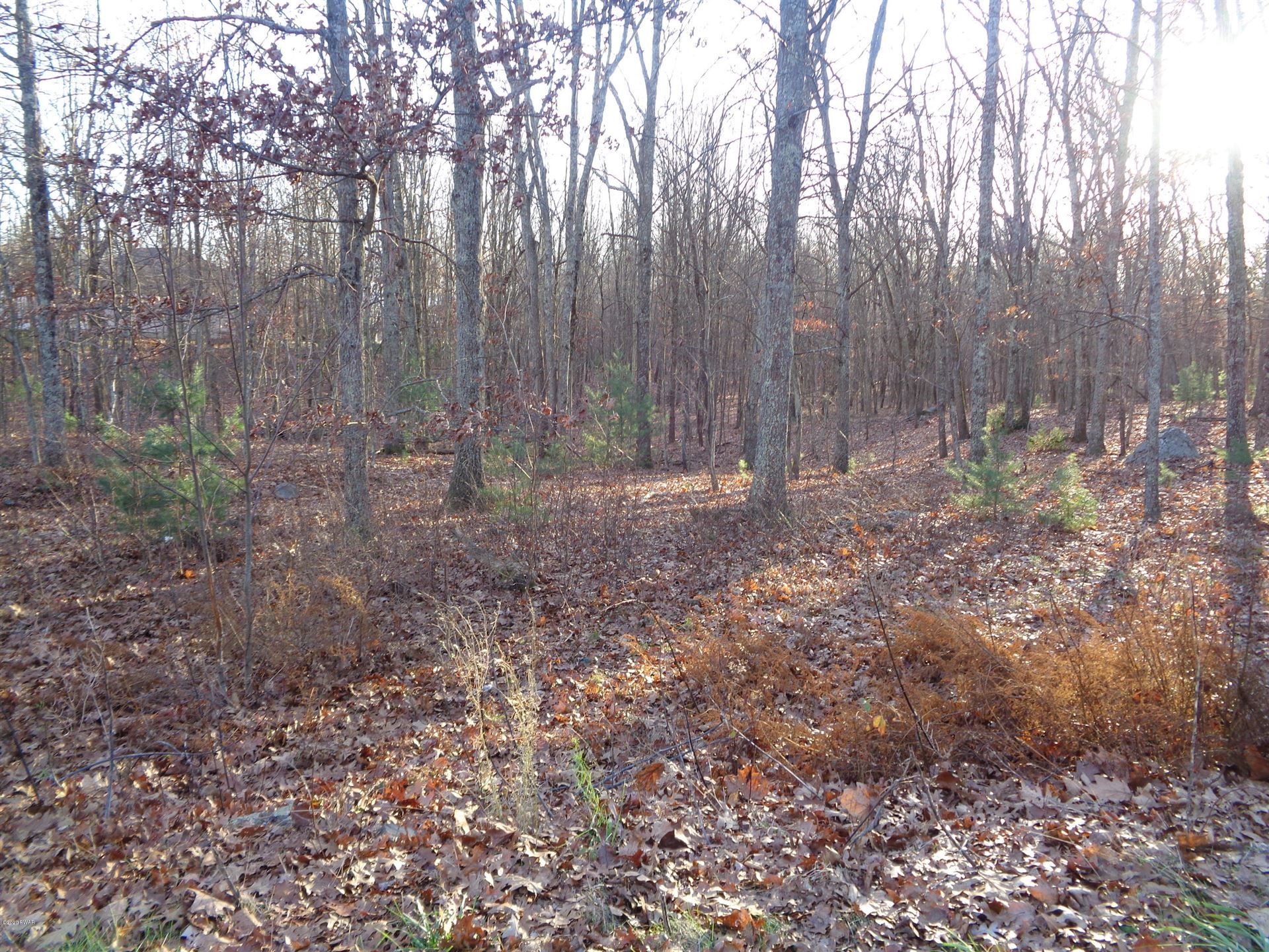 Photo of 1463 Milford Rd, Dingmans Ferry, PA 18328 (MLS # 20-4626)
