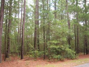 Photo of 17 Cardinal Court, Wagram, NC 28396 (MLS # 197032)