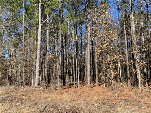 Photo of Tbd Willow Lane, Hamlet, NC 28345 (MLS # 198076)
