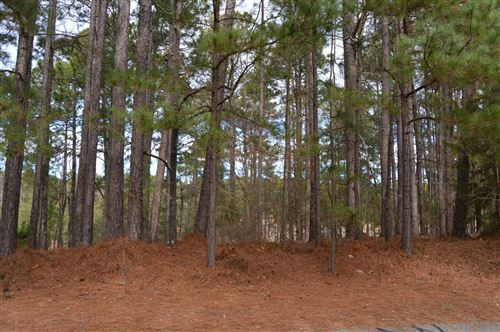 Photo of 118 Otter Drive, West End, NC 27376 (MLS # 204086)