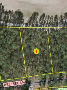 Photo of Lot 10 Beetree Lane, Wagram, NC 28396 (MLS # 198097)