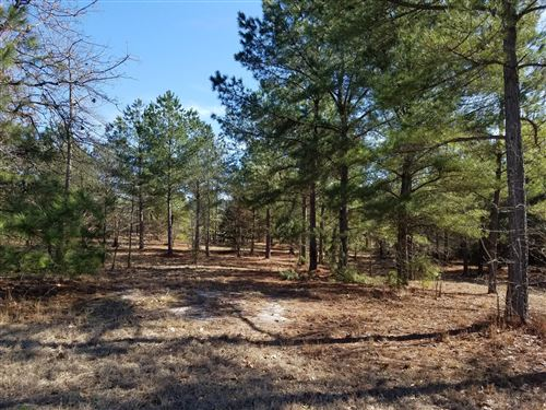 Photo of 260 Broken Ridge Trail, West End, NC 27376 (MLS # 198131)
