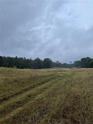 Photo of 576 Bald Eagle Drive, Vass, NC 28394 (MLS # 208153)