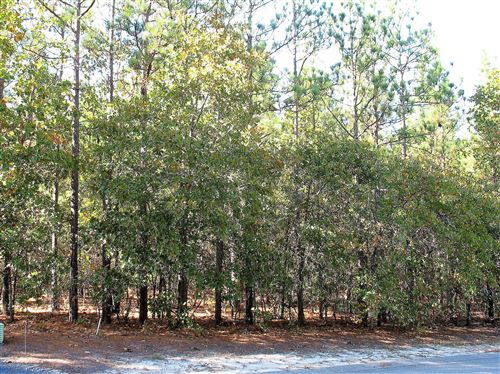 Photo of 113 James Drive, West End, NC 27376 (MLS # 202192)