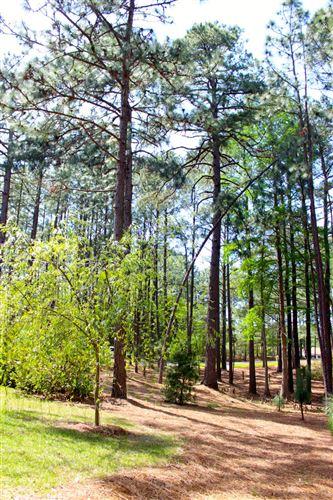 Photo of 45 Martin Drive, Whispering Pines, NC 28327 (MLS # 203207)