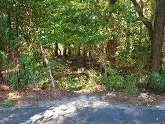 Photo of 108 Carrington Sq, West End, NC 27376 (MLS # 207366)