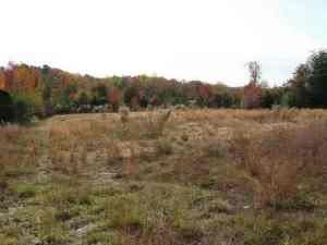 Photo of Tbd Connell & Hardy Rd, Carthage, NC 28327 (MLS # 195415)