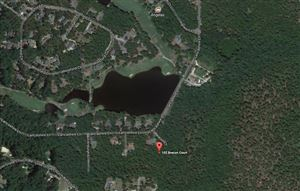 Photo of 102 Brecon Court, West End, NC 27376 (MLS # 195421)