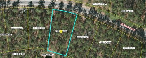 Photo of Lot 29 Peach Orchard Road, Wagram, NC 28396 (MLS # 205603)