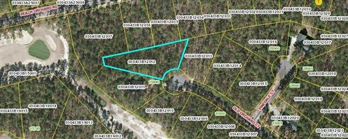 Photo of Lot 12 Old Orchard Court, Wagram, NC 28396 (MLS # 205609)