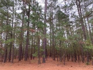 Photo of 23 Plantation Drive, Southern Pines, NC 28387 (MLS # 201615)