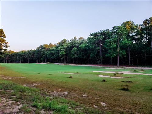 Photo of Lot 10 Old Orchard Court, Wagram, NC 28396 (MLS # 201621)
