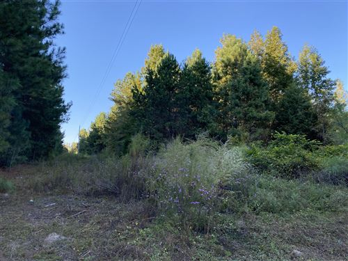 Photo of Tbd Currie Drive, West End, NC 27376 (MLS # 202653)