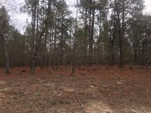 Photo of 235 Morganwood Drive, West End, NC 27376 (MLS # 198756)