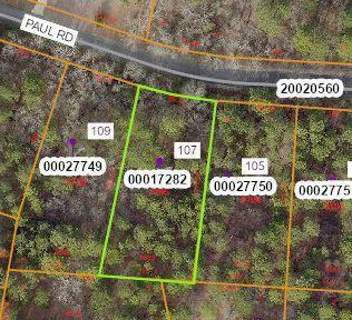 Photo of 107 Paul Road, West End, NC 27376 (MLS # 205791)