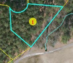 Photo of 28 Forest Fern Court, Wagram, NC 28396 (MLS # 202804)