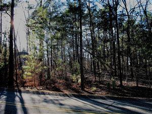 Photo of 499 Longleaf Drive, West End, NC 27376 (MLS # 196847)