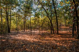 Photo of 160 Carriage Park Drive, West End, NC 27376 (MLS # 196970)