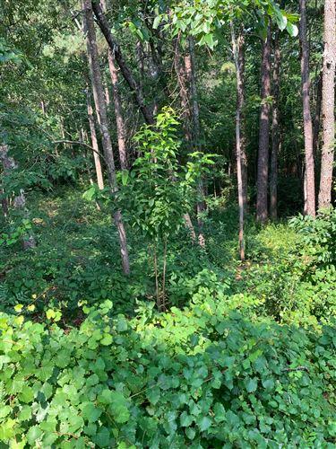 Photo of 0 Castlewood Lane, Pinehurst, NC 28374 (MLS # 207981)