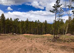 Photo of 197 PARK VIEW Drive, Woodland Park, CO 80863 (MLS # 3579006)