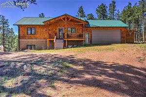 Photo of 113 Blue Mountain Drive, Florissant, CO 80816 (MLS # 2705011)