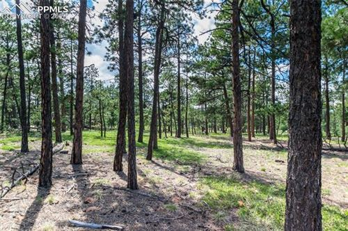 Photo of 19365 Hilltop Pines Path, Monument, CO 80132 (MLS # 9705019)