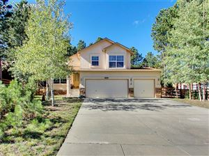 Photo of 849 Misty Pines Circle, Woodland Park, CO 80863 (MLS # 8517038)