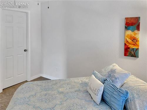 Tiny photo for 222 N Laurel Street #J, Woodland Park, CO 80863 (MLS # 8261050)