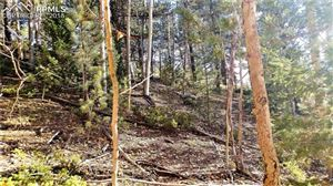 Photo of 741 Pikes Peak Drive, Divide, CO 80814 (MLS # 1126067)