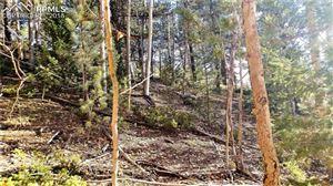 Photo of 741 Pikes Peak Drive, Divide, CO 80814 (MLS # 1126067)
