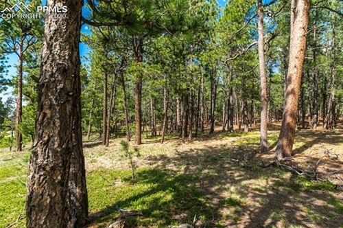 Photo of 19204 Hilltop Pines Path, Monument, CO 80132 (MLS # 2140131)