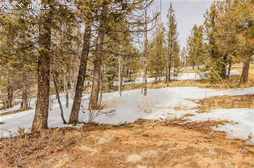 Photo of 60 Columbine Road, Woodland Park, CO 80863 (MLS # 3188134)