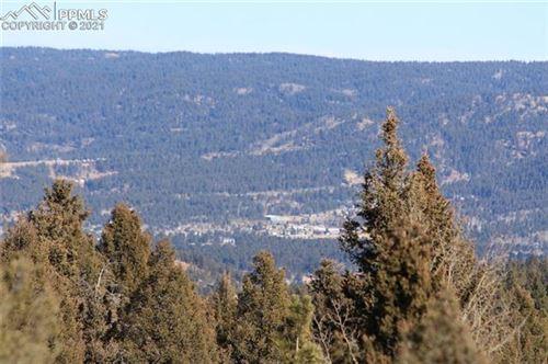 Photo of 238 Skyline Drive, Woodland Park, CO 80863 (MLS # 5448210)
