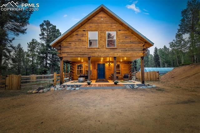 Photo for 1245 Blossom Road, Woodland Park, CO 80863 (MLS # 7603237)
