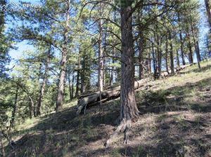 Photo of 291 Mesa Drive, Florissant, CO 80816 (MLS # 6059283)