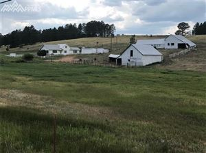 Photo of 463 South Forty Road, Woodland Park, CO 80863 (MLS # 7621304)
