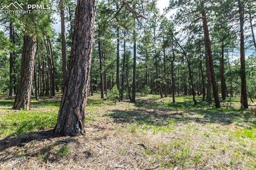 Photo of 19124 Hilltop Pines Path, Monument, CO 80132 (MLS # 1148315)