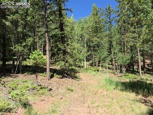 Photo of 1313 Spruce Ridge Lane, Woodland Park, CO 80863 (MLS # 4887353)