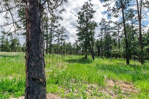 Photo of 19405 Hilltop Pines Path, Monument, CO 80132 (MLS # 1201365)