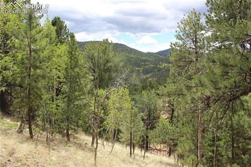Photo of 104 Rainbow Court, Divide, CO 80814 (MLS # 9048383)