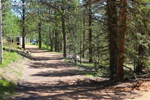 Photo of 245 Blue Bell Road, Woodland Park, CO 80863 (MLS # 8028392)
